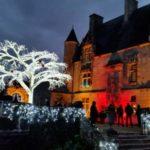 chateau-de-crazannes et son arbre